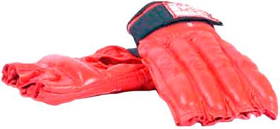 Боксерские перчатки Bulls PM-284-L - общий вид