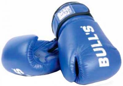 Боксерские перчатки Bulls ТТ-209-10 - общий вид