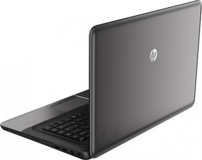 Ноутбук HP 255 (H6R24EA) - вид сзади