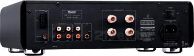 Микросистема Magnat MC 2S - разъемы