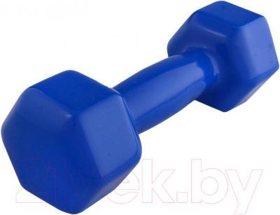 Гантель NoBrand 2kg (синий)