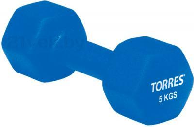 Гантель Torres PL50015 (синий) - общий вид