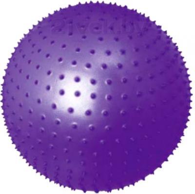 Фитбол массажный Motion Partner МР570 (фиолетовый) - общий вид