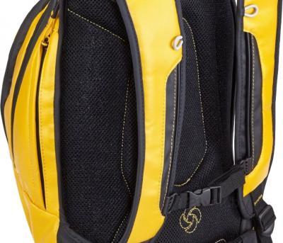 Рюкзак для ноутбука Samsonite Paradiver (U74*18 005) - вид сзади