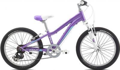 Детский велосипед Fuji Dynamite 20 Girls (10, Purple, 2014) - общий вид