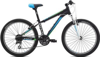 Велосипед Fuji Dynamite 24 Pro Boys (13, Black, 2014) - общий вид