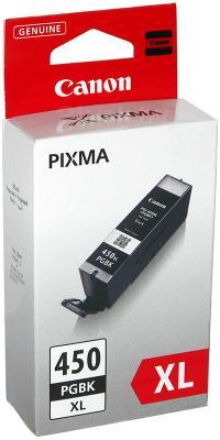 Картридж Canon PG-450XLPGBK - общий вид
