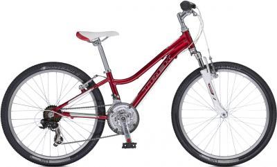 Велосипед Trek MT 220 Girl's (24, красный, 2014) - общий вид