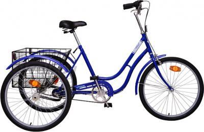 Велосипед Aist 113-391 (Turquoise) - общий вид