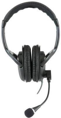 Наушники-гарнитура Sven AP-670MV (черно-серебристый) - общий вид