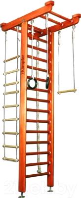 Детский спортивный комплекс Kampfer Big Sport Ceiling