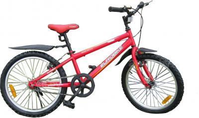 Велосипед Eurobike Focus (20, Red) - общий вид