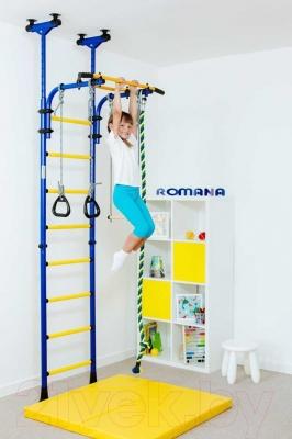 Детский спортивный комплекс Romana Комета 5 ДСКМ-2-8.06.Г1.490.01-24 (синий/желтый)