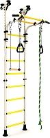 Детский спортивный комплекс Romana Комета 5 ДСКМ-2-8.06.Г1.490.01-24 (белый антик/золото) -