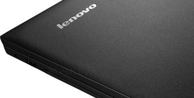 Ноутбук Lenovo IdeaPad B590 (59381383) - крышка
