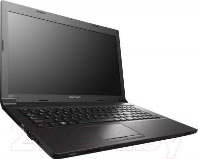 Ноутбук Lenovo B590 (59381366) - общий вид