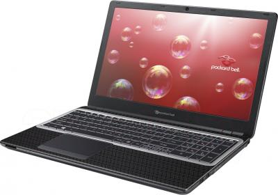 Ноутбук Packard Bell EasyNote TE69HW-29572G32Mnsk (NX.C2EER.010) - общий вид
