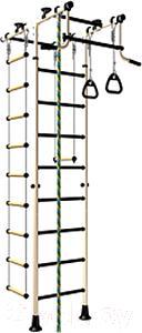 Детский спортивный комплекс Romana Комета-1 ДСКМ-2-8.06.Т.490.01-08 (белый антик/золото) - общий вид