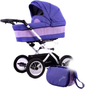 Детская универсальная коляска Adbor Bartolino (68А) - общий вид