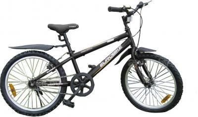 Велосипед Eurobike Focus (20, Black) - общий вид