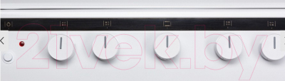 Кухонная плита Hansa FCGW62020