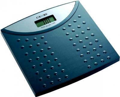 Напольные весы электронные Camry EB9171 - общий вид