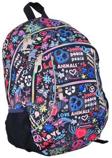 Рюкзак городской Paso 81-178C - общий вид