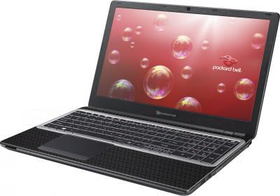 Ноутбук Packard Bell ENTE69CX-33214G50Mnsk (NX.C2RER.010) - общий вид