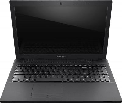 Ноутбук Lenovo IdeaPad G505 (59376401) - общий вид