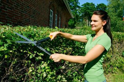 Садовые ножницы Fiskars 114750 - в работе