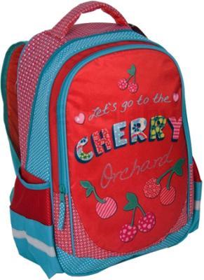 Школьный рюкзак Paso 14-1219C - общий вид