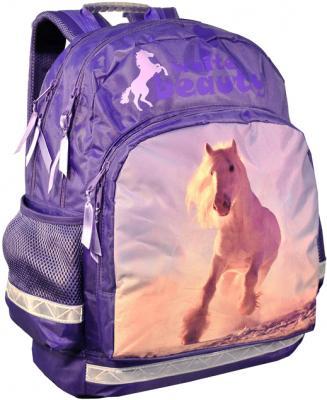 Школьный рюкзак Paso 24-275 - общий вид