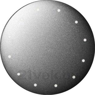 Фитнес-трекер Misfit Shine SH0AZ (Gray) - общий вид