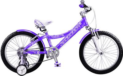 Детский велосипед Stels Pilot 240 Girl (Purple) - общий вид