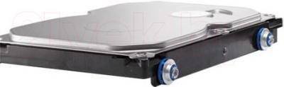 Жесткий диск HP 1TB (QK555AA) - общий вид