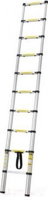 Телескопическая лестница Tarko T0108 - общий вид