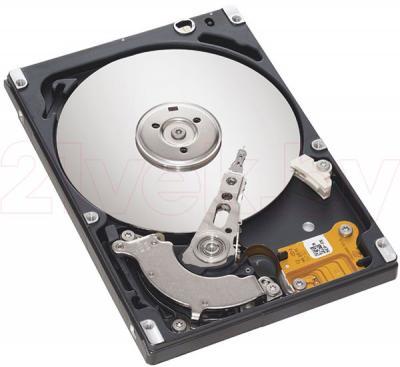 Жесткий диск Seagate Momentus 5400.6 250 Gb (ST9250315AS) - общий вид