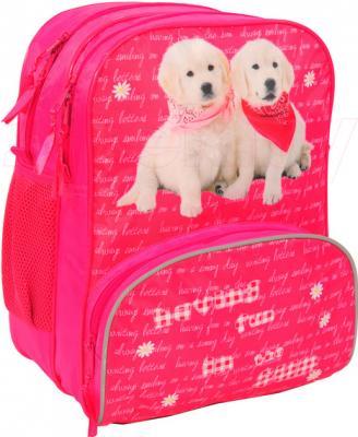 Школьный рюкзак Paso 13-102D - вид спереди