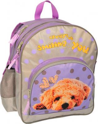 Школьный рюкзак Paso 13-157D - вид спереди