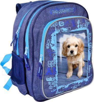 Школьный рюкзак Paso 14-080FOT - общий вид