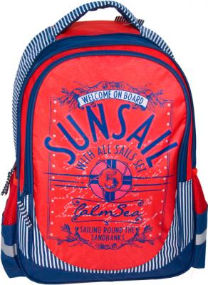 Школьный рюкзак Paso 14-1219M - общий вид