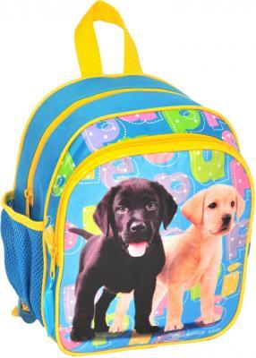 Детский рюкзак Paso 21-309А - общий вид