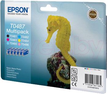 Комплект картриджей Epson C13T04874010 - общий вид
