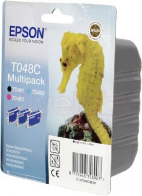 Комплект картриджей Epson C13T048C4010 - общий вид