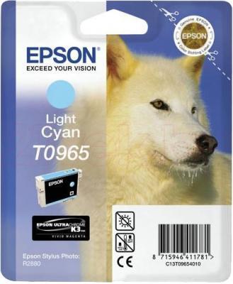 Картридж Epson C13T09654010 - общий вид