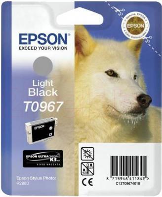 Картридж Epson C13T09674010 - общий вид