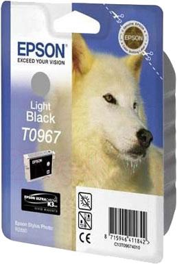 Картридж Epson C13T09694010 - общий вид