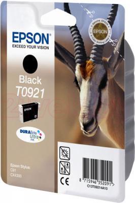 Картридж Epson C13T10814A10 - общий вид
