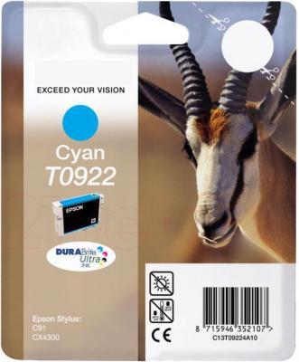 Картридж Epson C13T10824A10 - общий вид