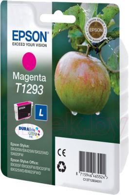 Картридж Epson C13T12934011 - общий вид